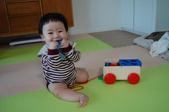 赤ちゃんが何でも口に入れてしまう理由は?知的好奇心の表れ?